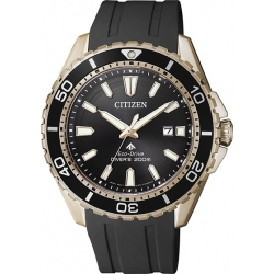 BN0193-17E CITIZEN Eco-Drive Black Dial Men's Watch