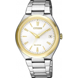 Citizen FE6024-55B