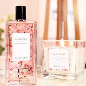 Fragrances Card